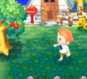 Animal Crossing 3DS1