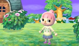 animalcrossing3dS